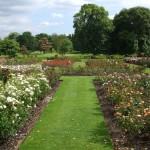 I_giardini_inglesi_di_Bexley
