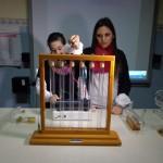 Laboratorio di fisica e scienze