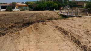 dune-oasi-2